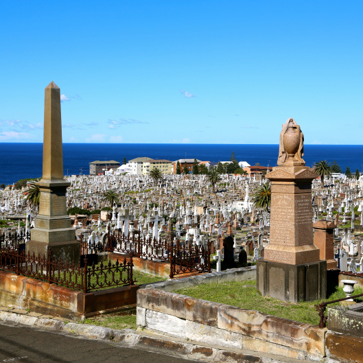 Waverley Cemetery (Image by LM for TSL)