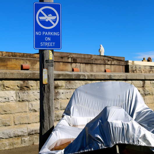 Clearly, the residents within Waverley Council are very law abiding... (Image by LM for TSL)