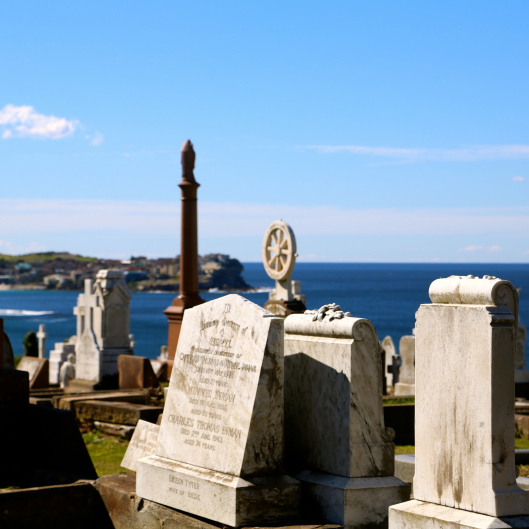 Bazillion Dollar Views at Waverley Cemetery (Image by LM for TSL)
