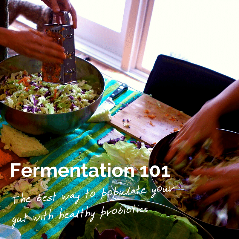 Fermentation 101