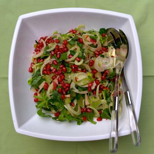 TSLFennel, Celery, Apple and Pomegranate Salad