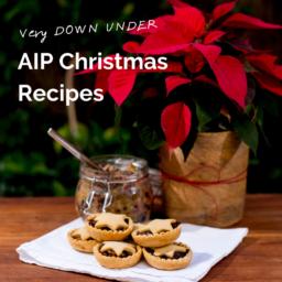 AIP Christmas Recipes
