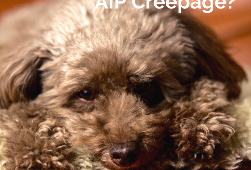 What is AIP Creepage?