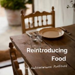 Reintroducing foods on AIP