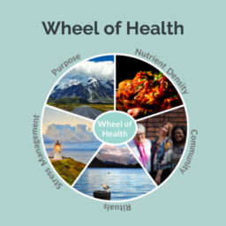 Wheel of Health