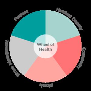 Wheel of Health