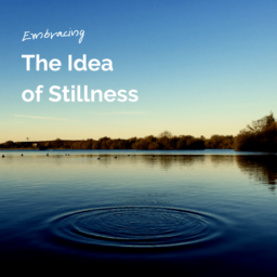 The Idea of Stillness