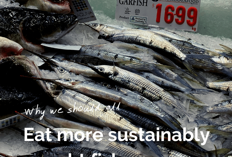 Eat more sustainably caught fish